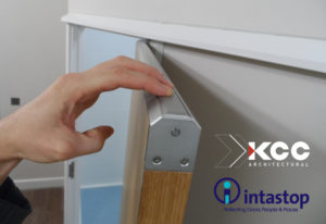 Intastop - Anti-Ligature Door Top Alarm